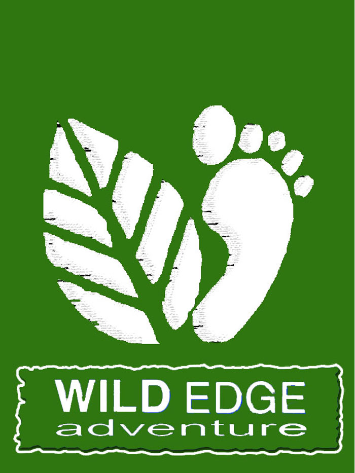 wild edge t shirt (woodland)